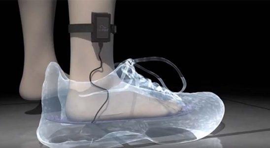 virtual feet