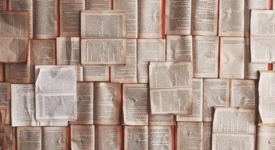 libros abiertos